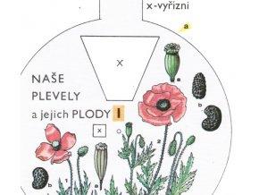 Naše plevely a jejich plody