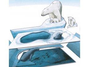Na lovu s ledními medvědy