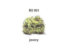 Javory