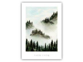 mlha v lese 2
