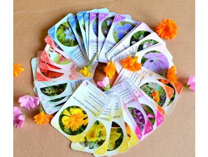 Jedlé květy - kvarteto - tištěné