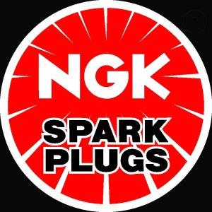 nahled_NGK