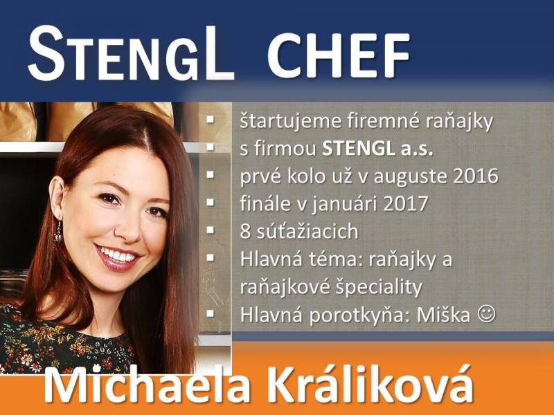 michaela-kralikova-spolupraca-stengl