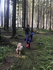 rodina na prechadzke v lese jezko bezko