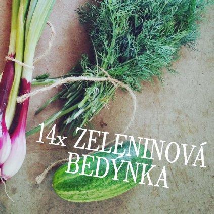 14xbedynka