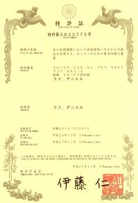 LOGITEX_patent_Japan
