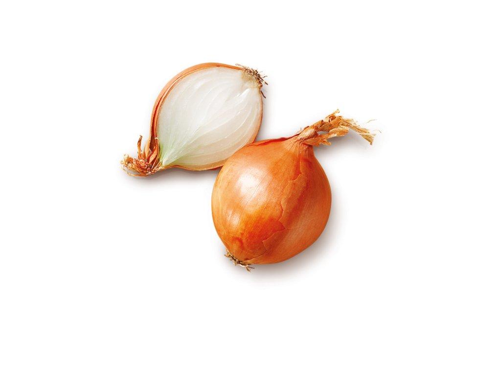 cibule susena1.2
