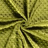 Minky 195g/m2 - 26 barev (Barva Green)