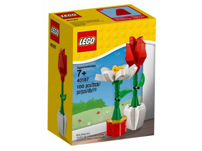 LEGO 40187 Květinová výstava