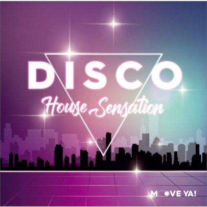disco house sensation
