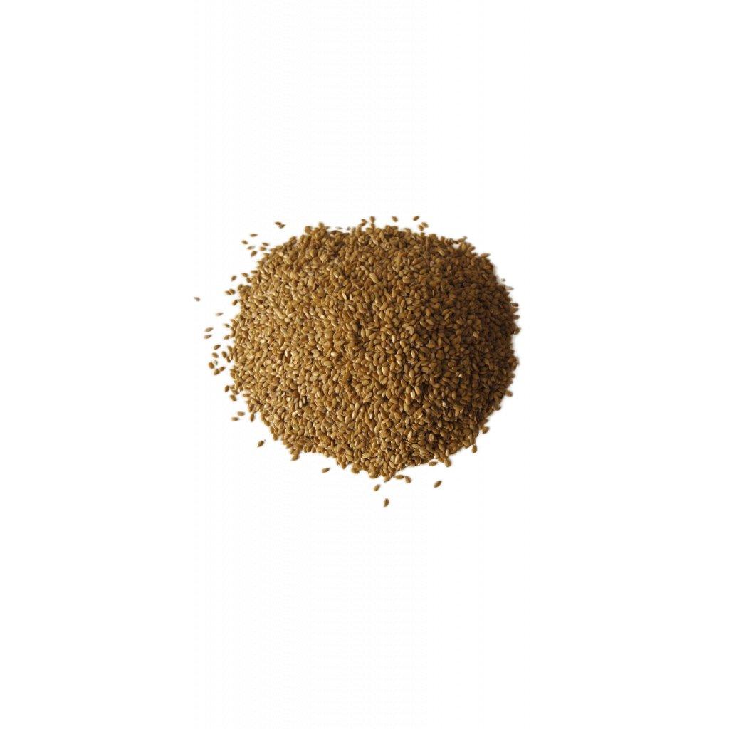 Lněné semínko