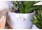 Pravé perly ve stříbře