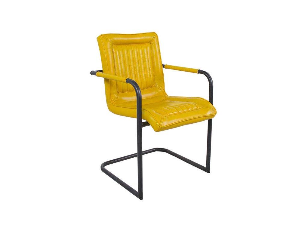 Kožená židle DT47