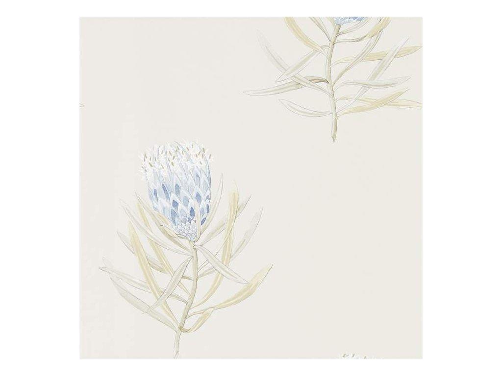 PROTEA FLOWER - China Blue/Canvas - 216327