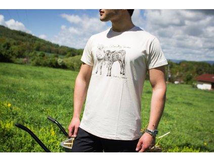 Pánské tričko Kravičky s krátkým rukávem