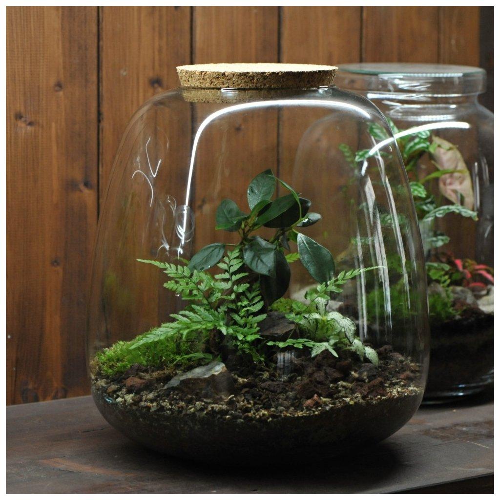 terrarium R green 01m