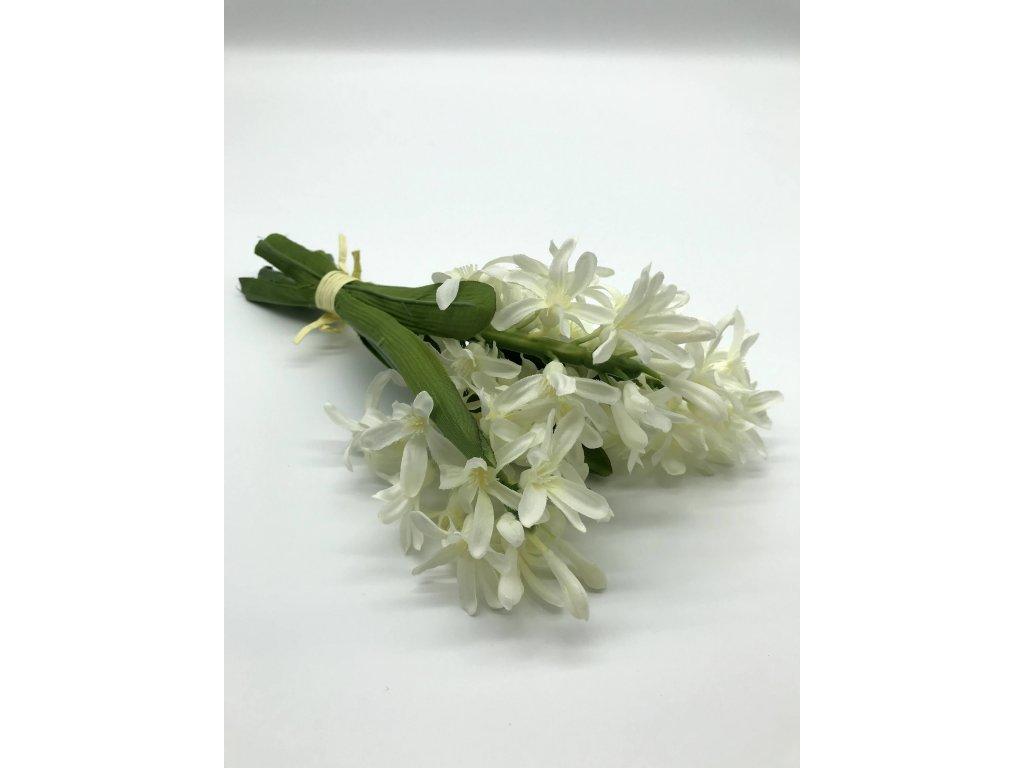 Hyacint bílý