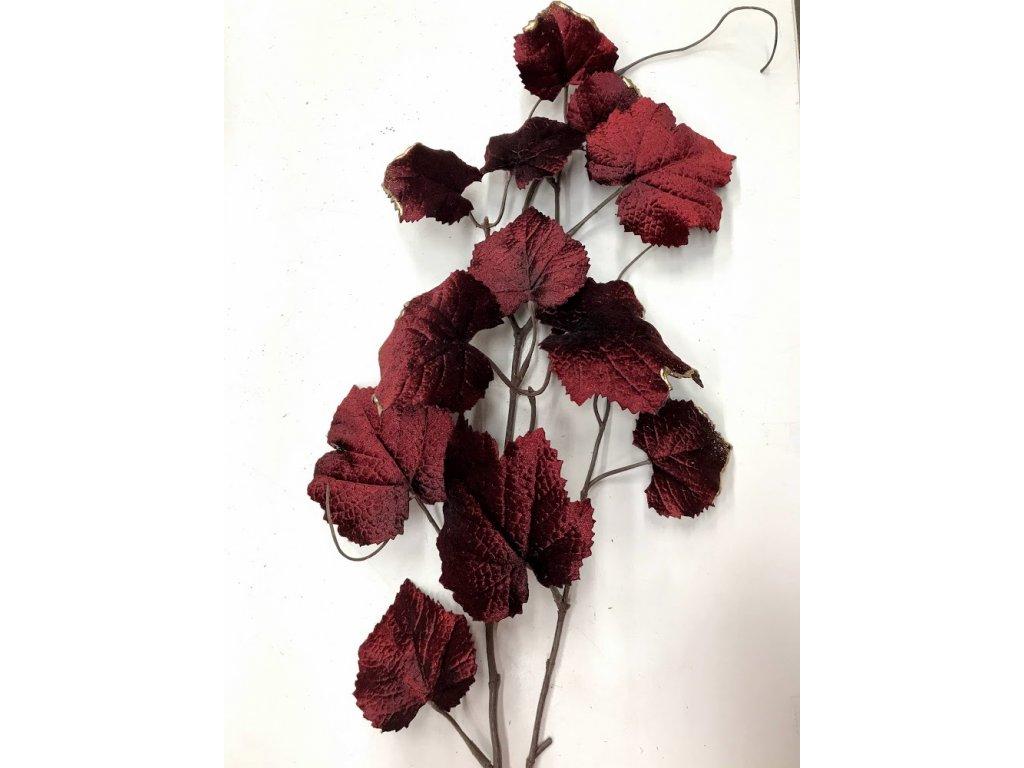 Větev s listy barva vínová