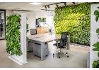 Živé zelené STĚNY
