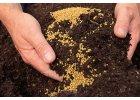 Dlouhodobá hnojiva