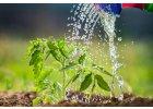 Vodorozpustná hnojiva