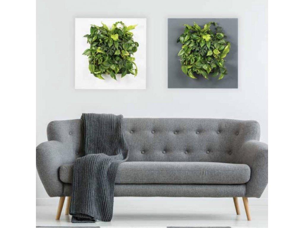 LivePicture1 sofa 7990 1200x