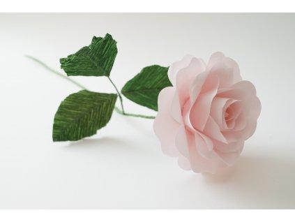 Workshop Růže z papíru