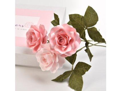 WORKSHOP IN A BOX - Růže z papíru