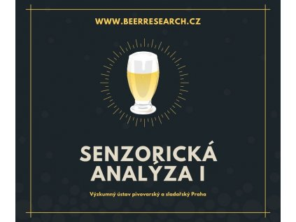 Senzorický seminář I