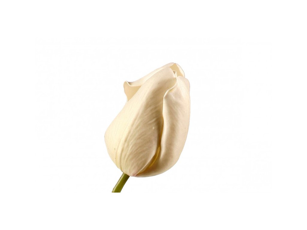 Dekorační tulipán bílý - set 2