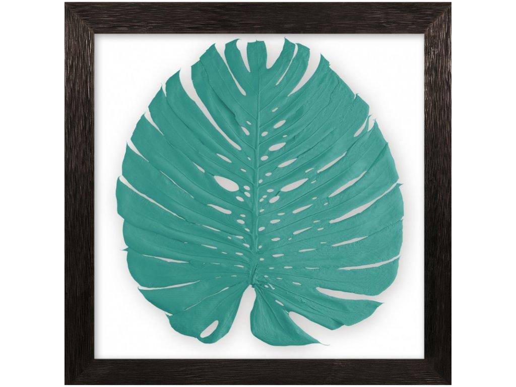 obraz phylomonstera tyrkysová cedrové dřevo
