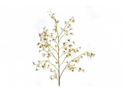 Sada 2 bílých orchideí Kelly Hoppen