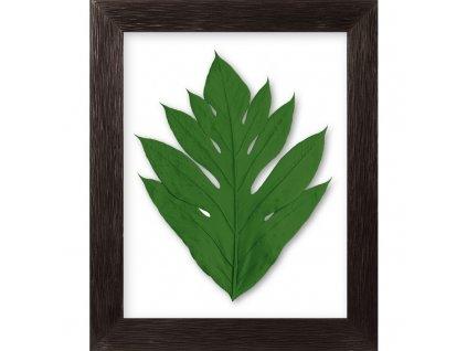 obraz arbre a pain tm.zelená cedrové dřevo