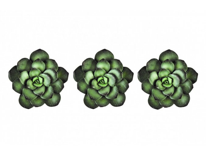 Sada 3 pryskyřičných sukulentů - zelený