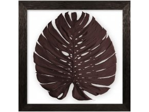 obraz phylomonstera hnědá hnědý dub