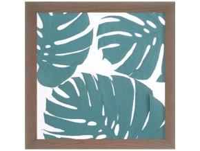Obraz phylomonstera tyrkysová