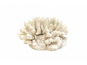 Pryskyřičný korál Spike
