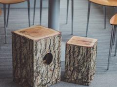 cajon-log-pod-stolem-x