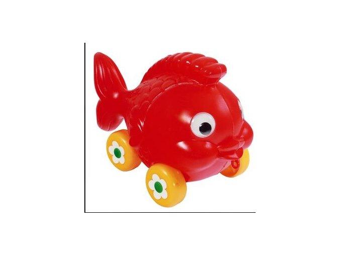 rybaKolecka