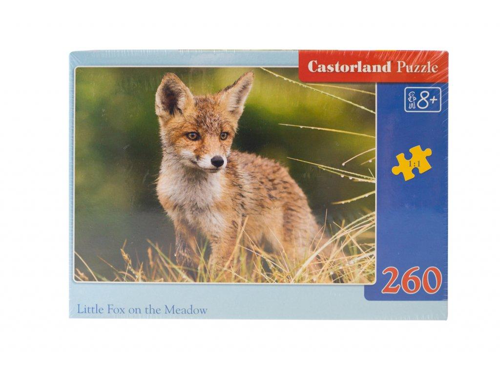 Castorland puzzle liska 1