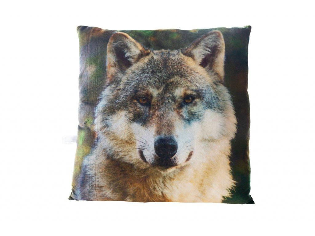 Polstar vlk 1