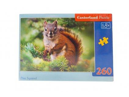 Castorland puzzle veverka 1