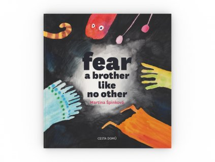 CD kniha Fear a brother like no other obalka celni pohled 3D