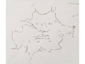 Rouška kresba, VEIL ORIGINAL