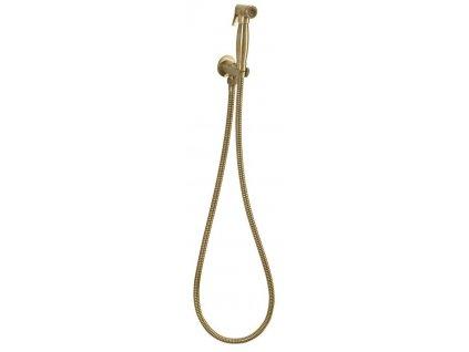 Bidetová sprška retro s hadicí a držákem sprchy s vyústěním, bronz