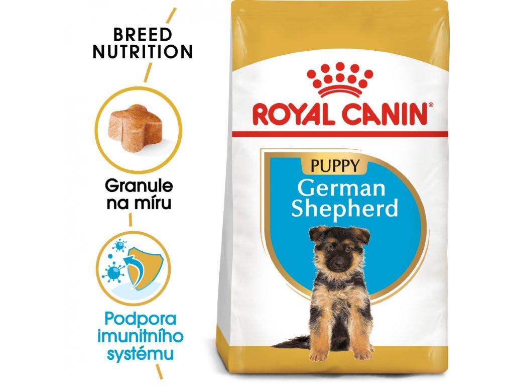 1 german shepherd puppy