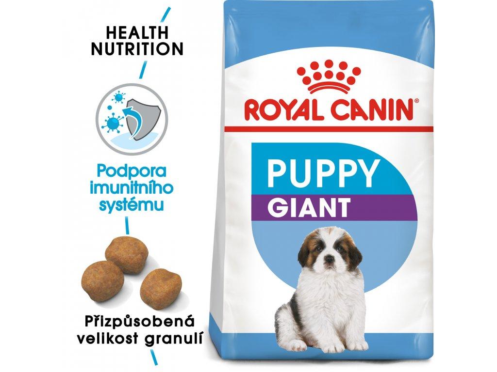 1 giant puppy