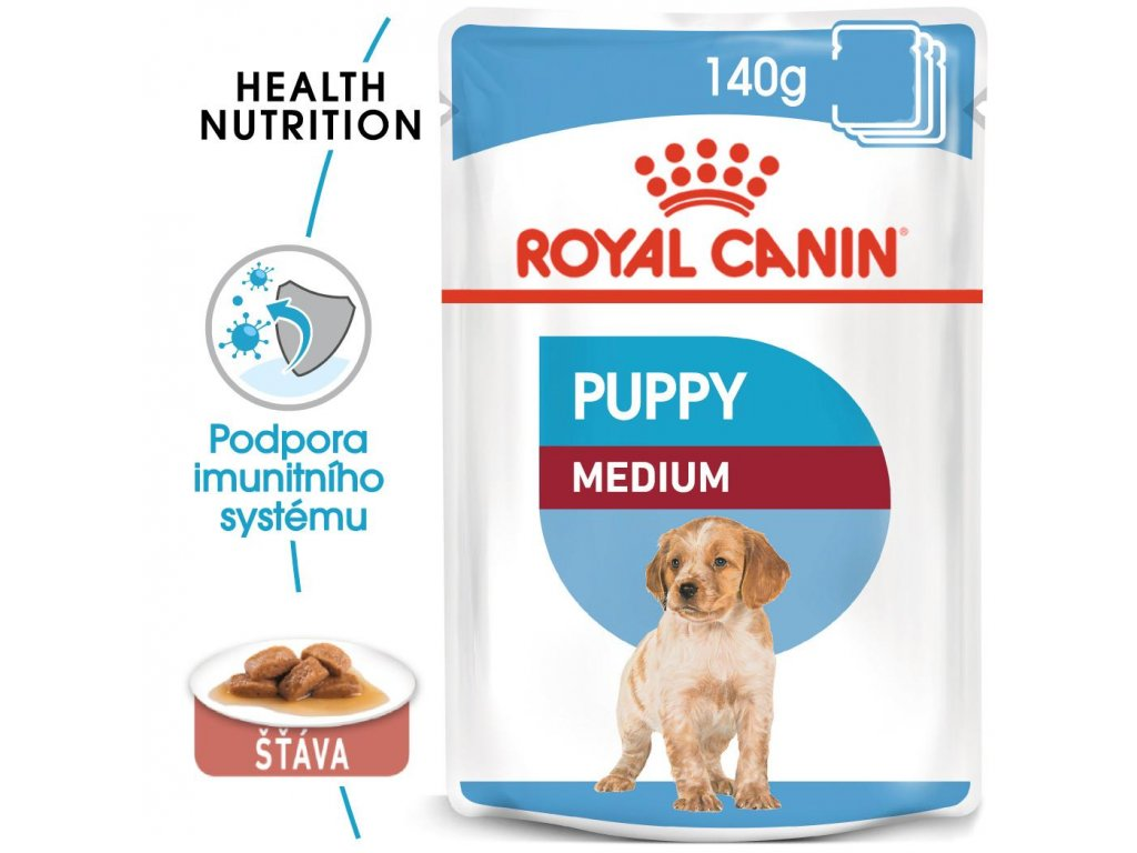 1 medium puppy 10x