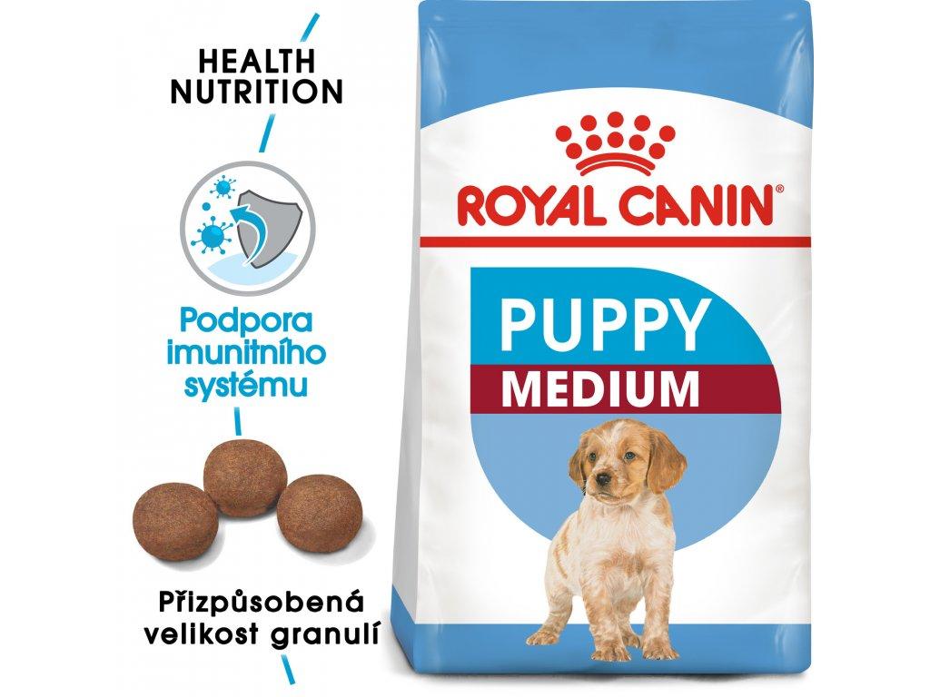 1 medium puppy
