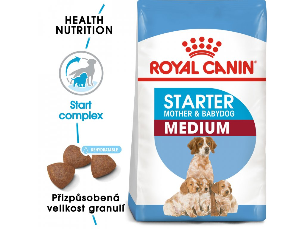 1 medium starter mother babydog